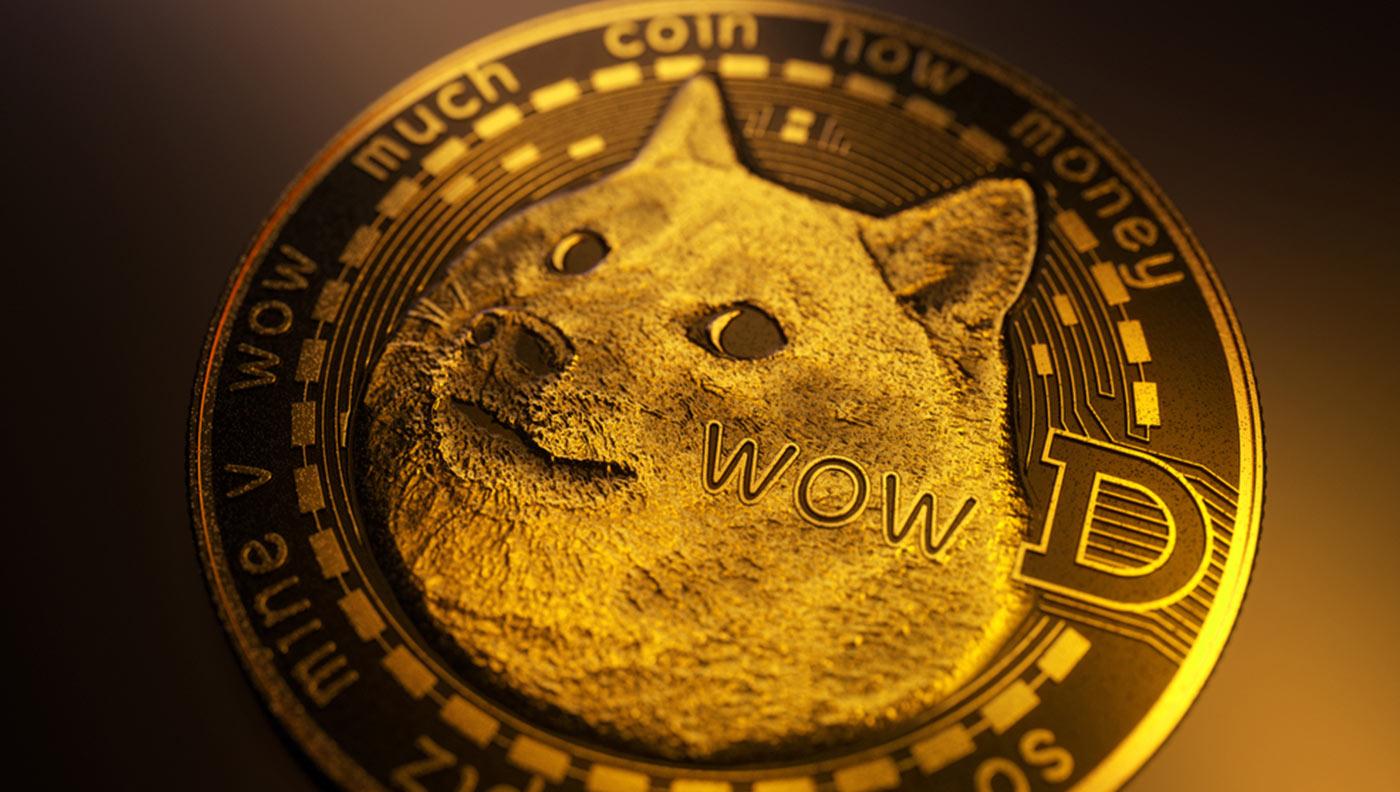 doge-1.jpg